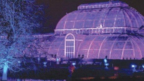 Christmas Sparkle at Kew Gardens